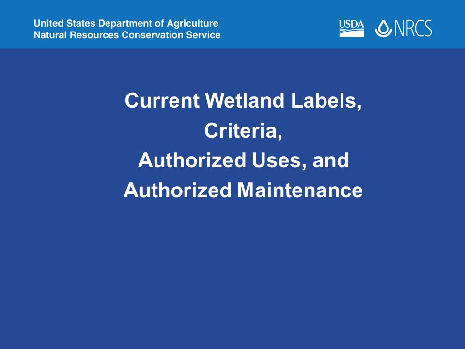 Current Wetland Labels, Authorized Maintenance