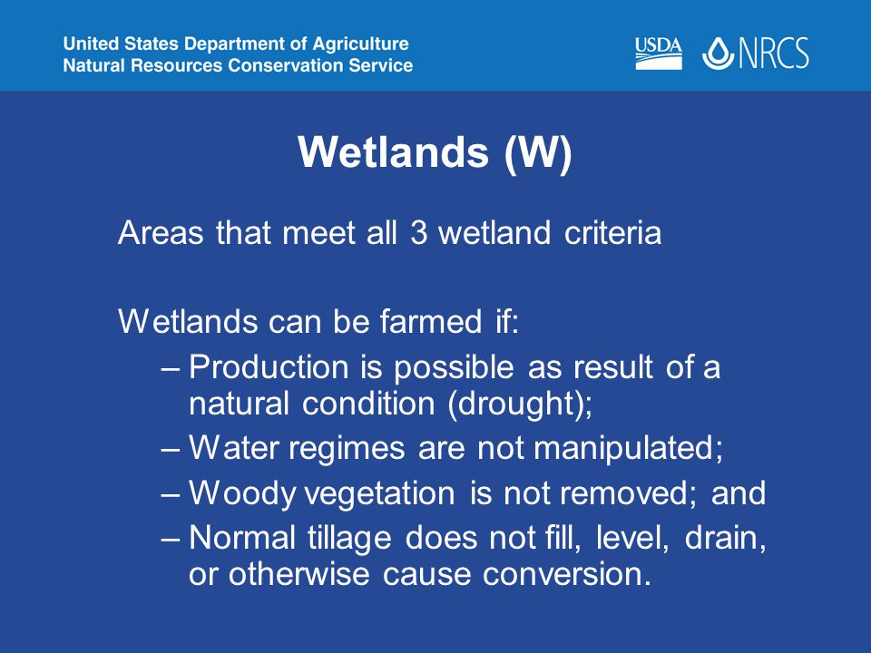Wetlands (W) Areas that meet all 3 wetland criteria
