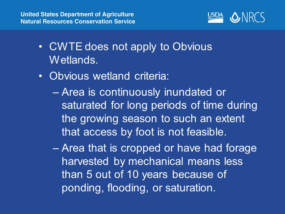 CWTE does not apply to Obvious Wetlands.