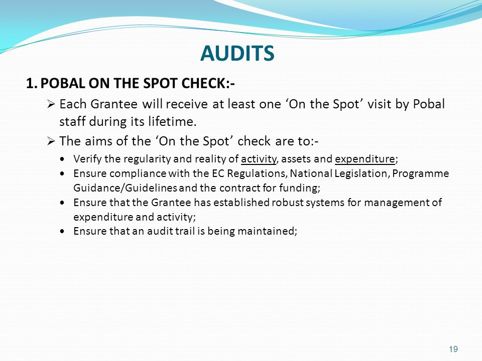 AUDITS 1. POBAL ON THE SPOT CHECK:-