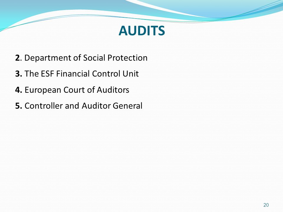 AUDITS 2. Department of Social Protection 3. The ESF Financial Control Unit 4.