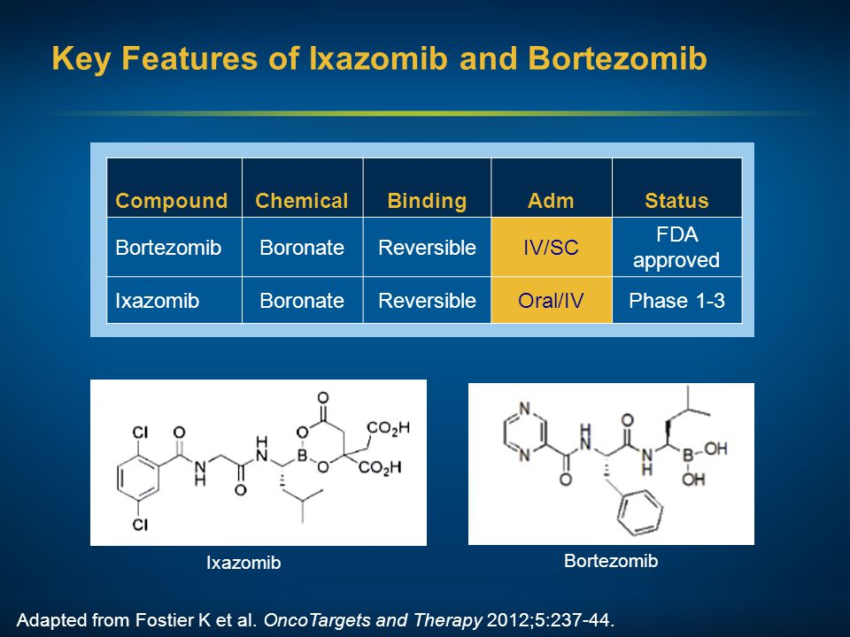 Key Features of Ixazomib and Bortezomib