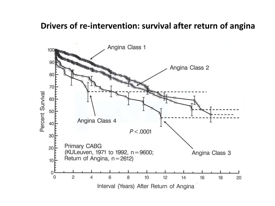 Drivers of re-intervention: survival after return of angina
