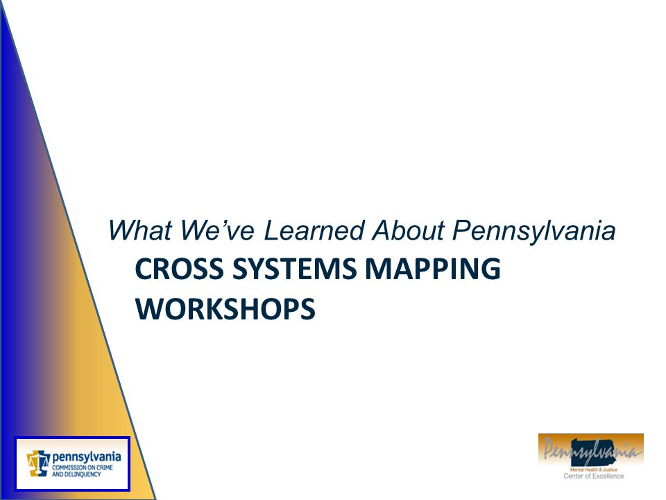 Cross Systems Mapping Workshops