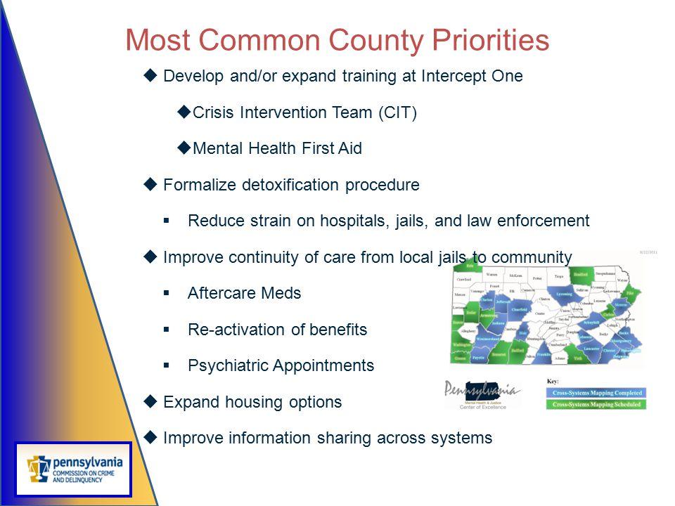 Most Common County Priorities