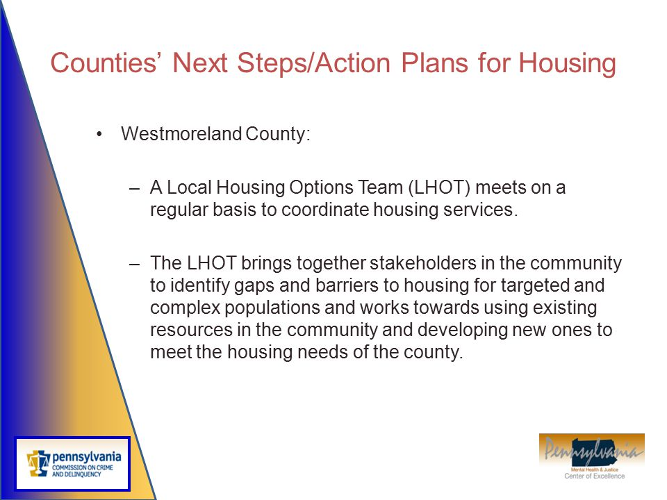 Counties' Next Steps/Action Plans for Housing