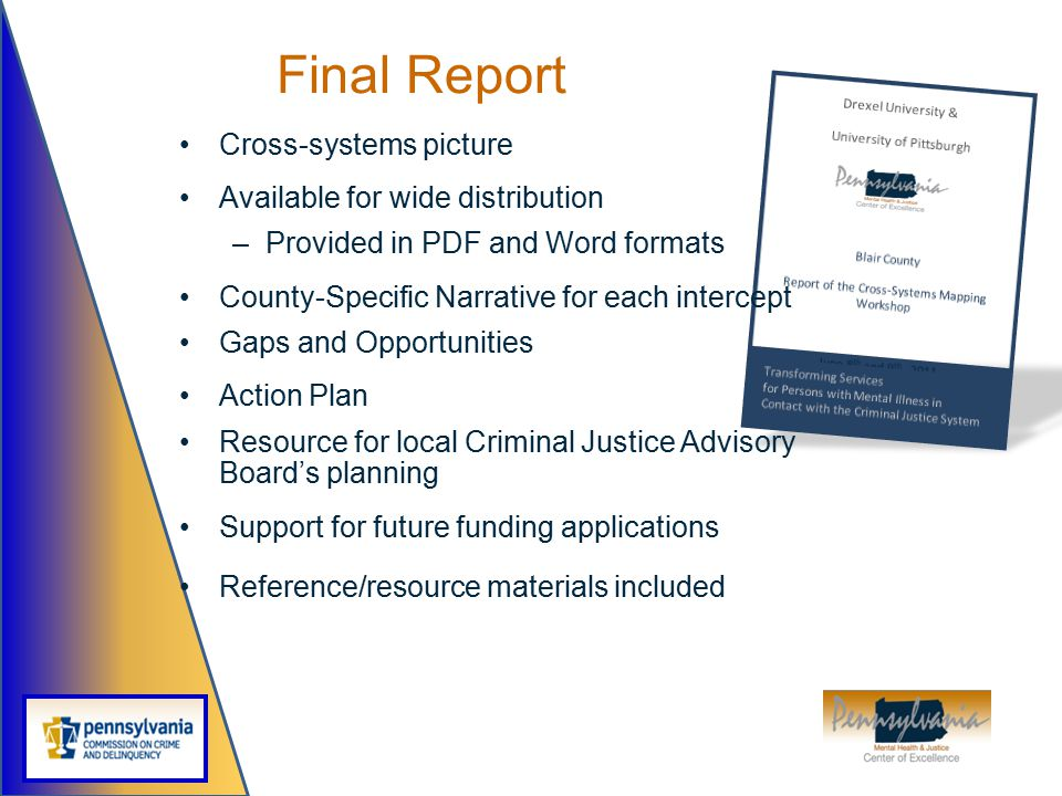 Final Report Cross-systems picture Available for wide distribution