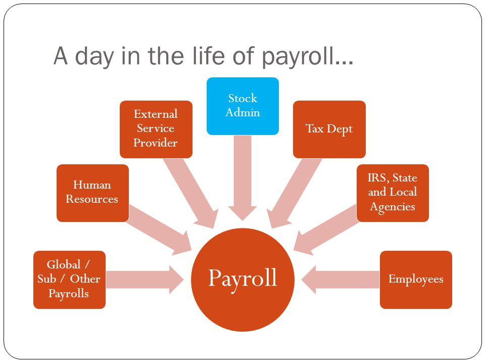 A day in the life of payroll…
