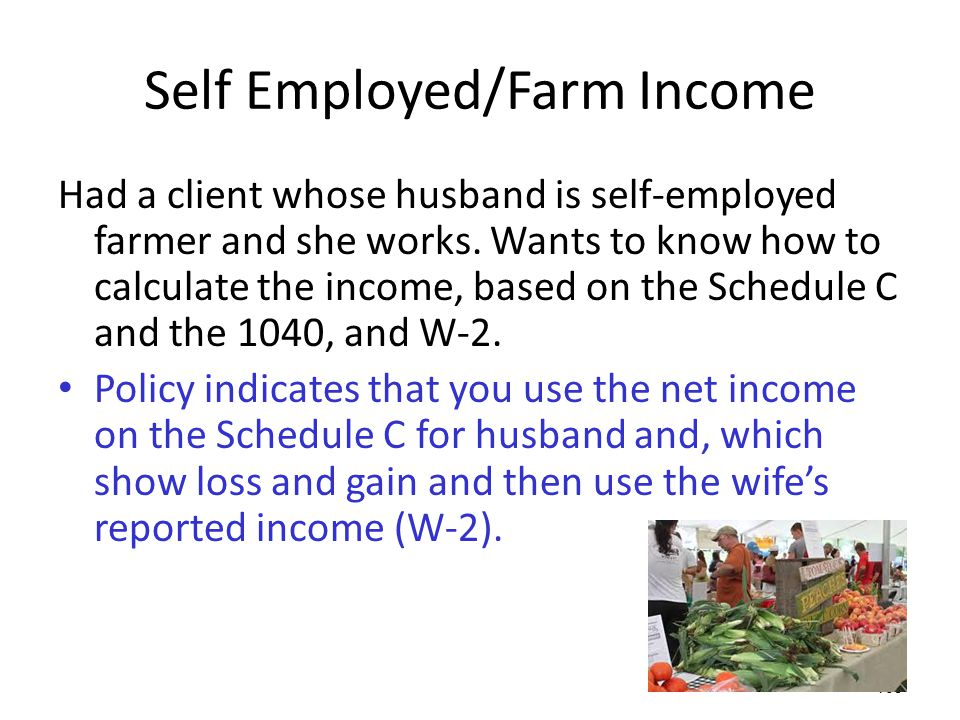 Self Employed/Farm Income