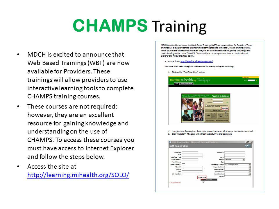 2013 WIC Income Webcast CHAMPS Training.
