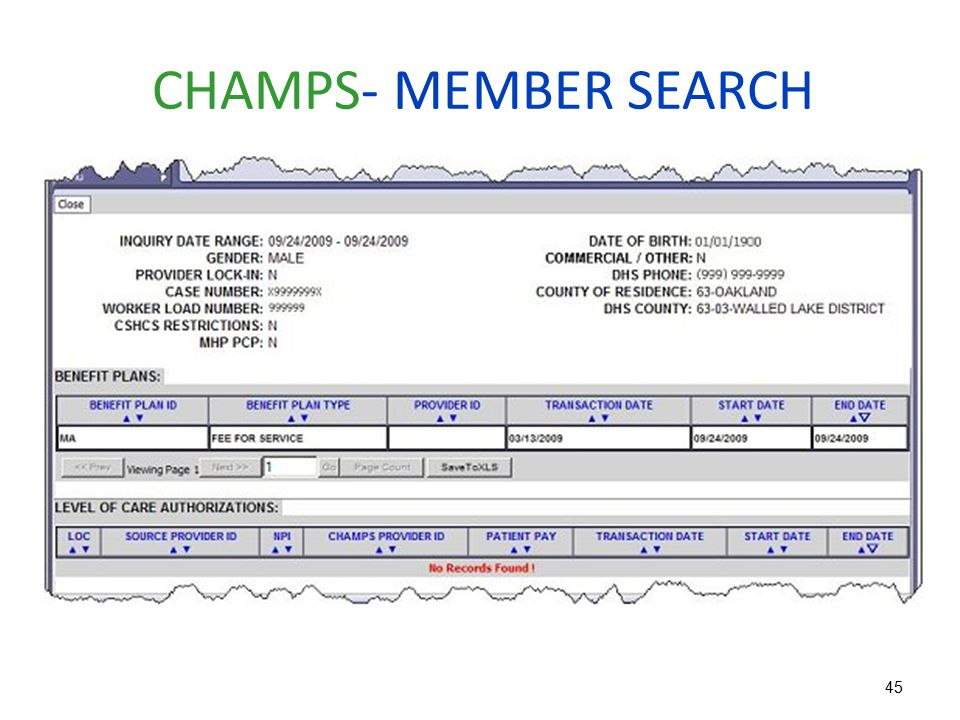 CHAMPS- MEMBER SEARCH
