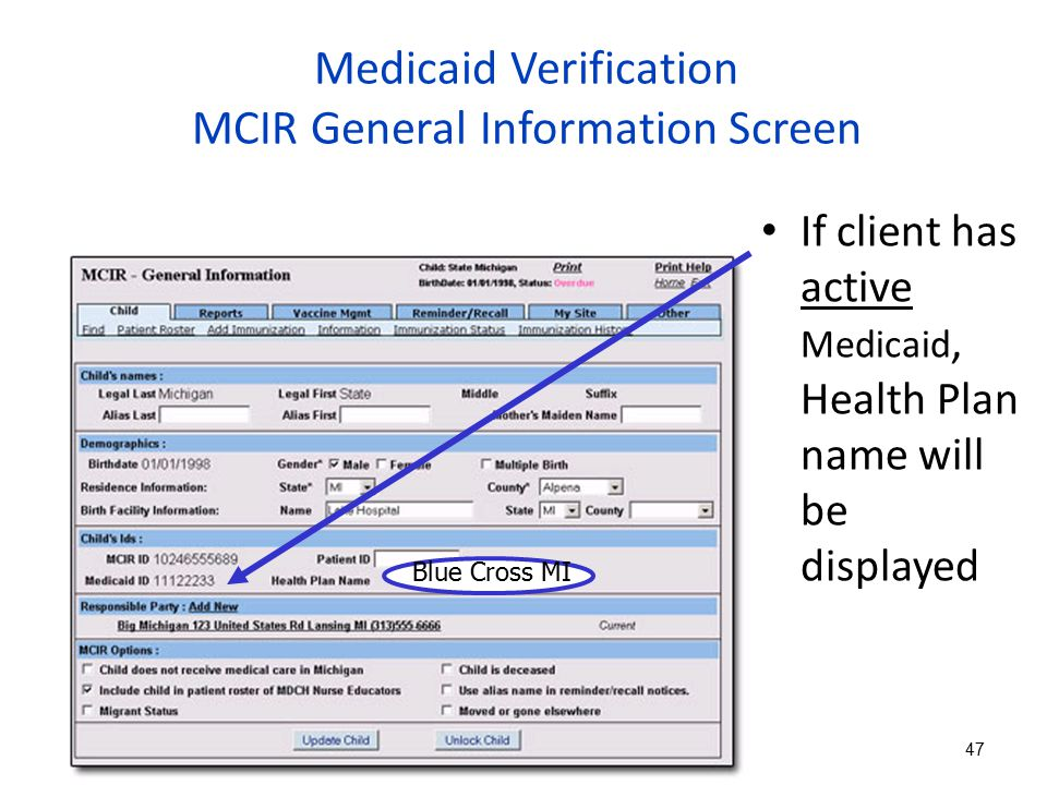 Medicaid Verification MCIR General Information Screen