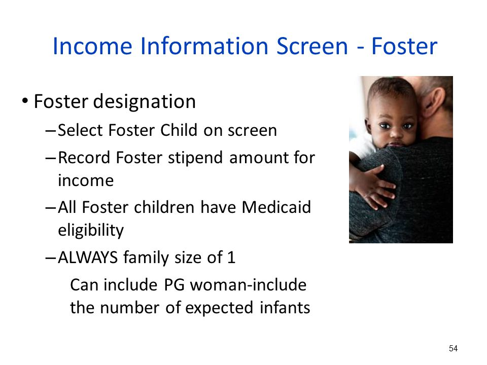 Income Information Screen - Foster