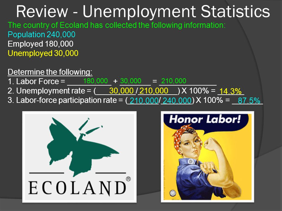 Review - Unemployment Statistics