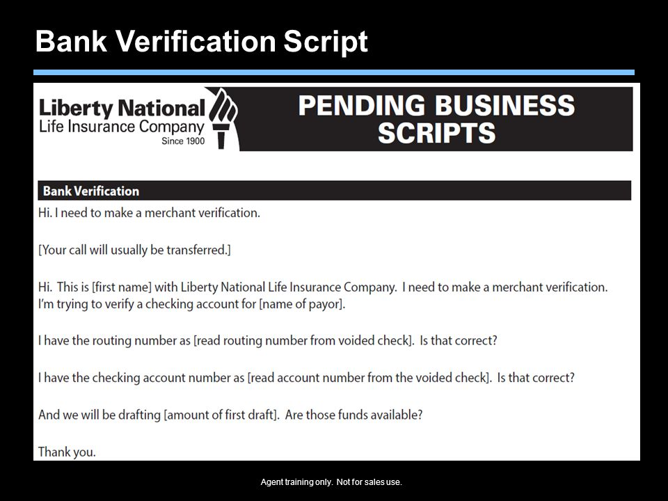 Bank Verification Script