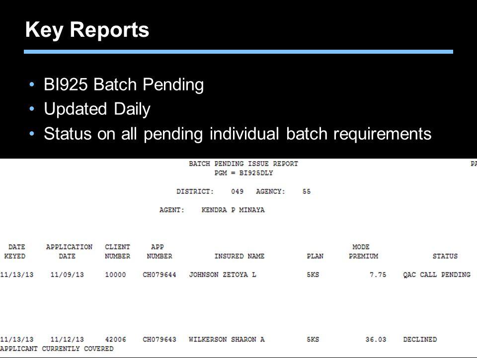 Key Reports BI925 Batch Pending Updated Daily