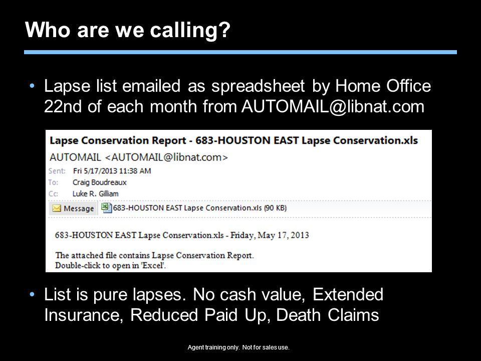 Who are we calling Lapse list emailed as spreadsheet by Home Office 22nd of each month from AUTOMAIL@libnat.com.