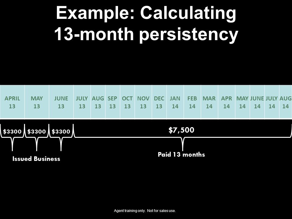 Example: Calculating 13-month persistency
