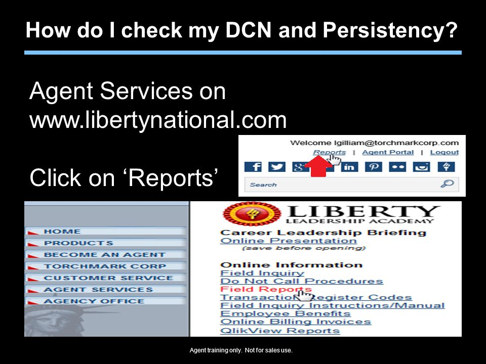 Agent Services on www.libertynational.com Click on 'Reports'