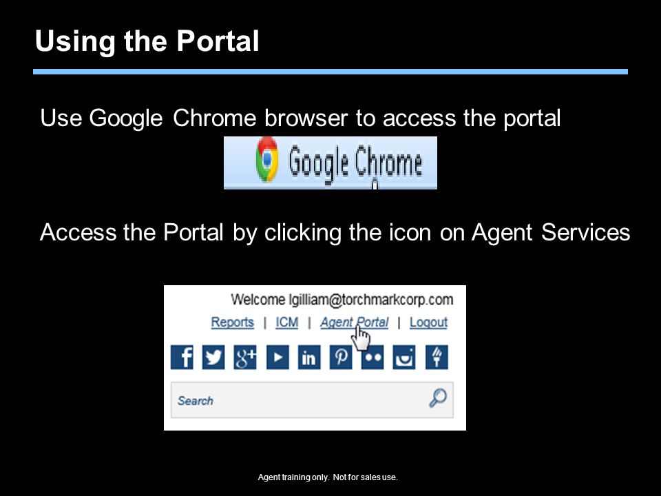 Using the Portal Use Google Chrome browser to access the portal