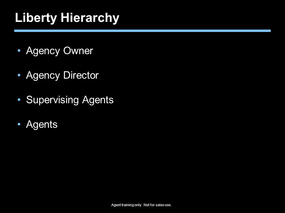 Liberty Hierarchy Agency Owner Agency Director Supervising Agents