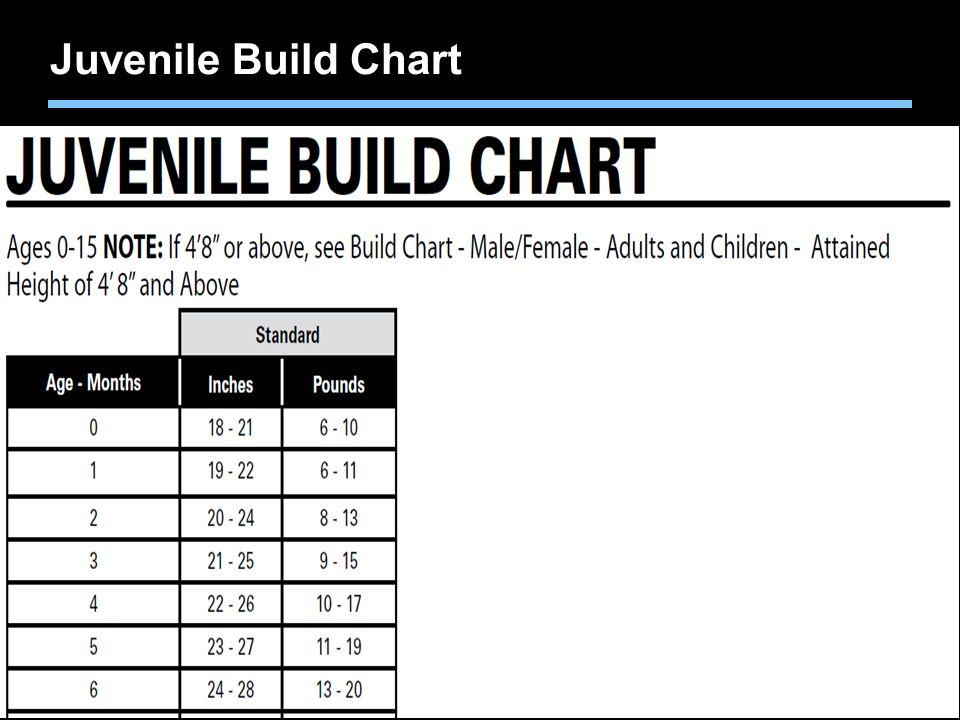 Juvenile Build Chart