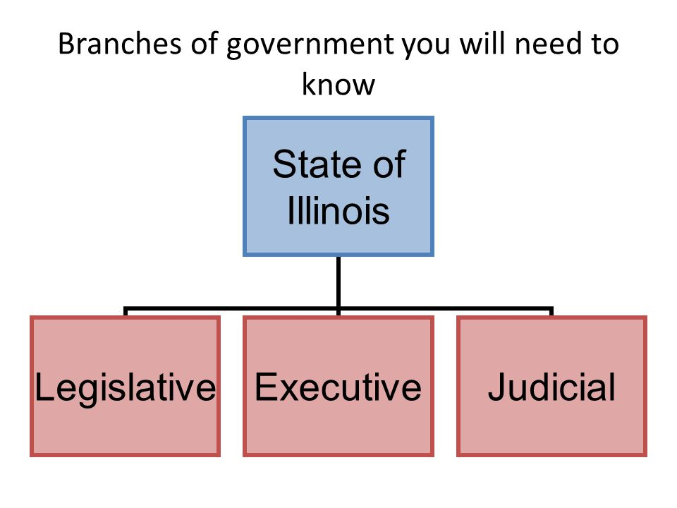 Branches of government you will need to know