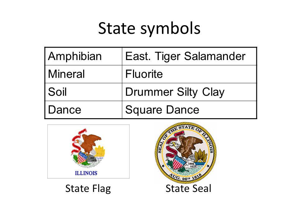 State symbols Amphibian East. Tiger Salamander Mineral Fluorite Soil