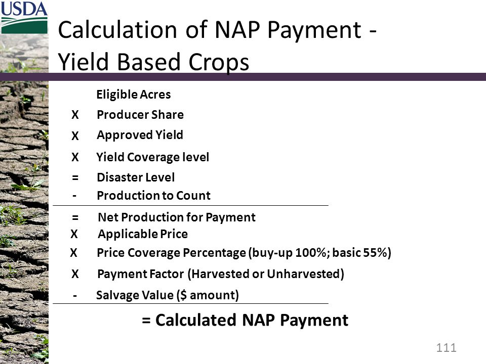 Calculation of NAP Payment - Yield Based Crops