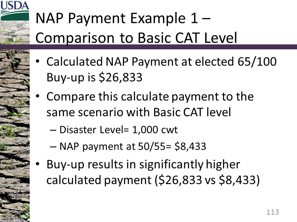 NAP Payment Example 1 – Comparison to Basic CAT Level
