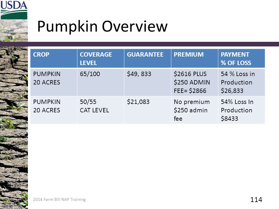 Pumpkin Overview CROP COVERAGE LEVEL GUARANTEE PREMIUM PAYMENT