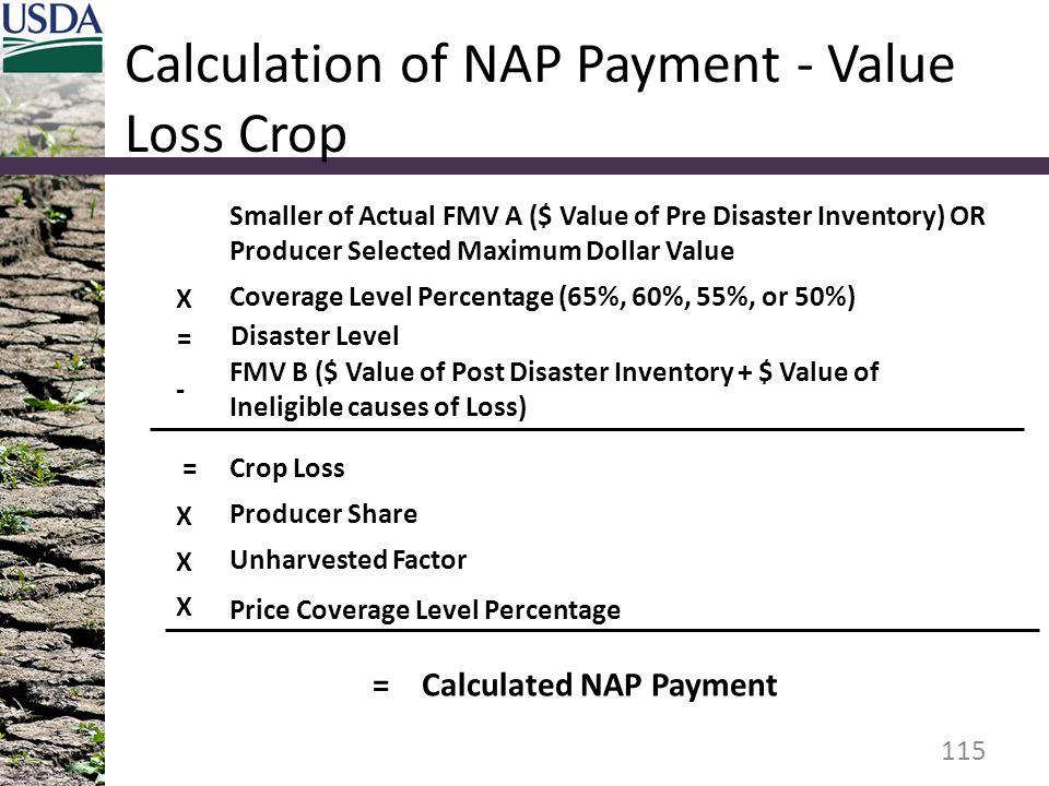 Calculation of NAP Payment - Value Loss Crop