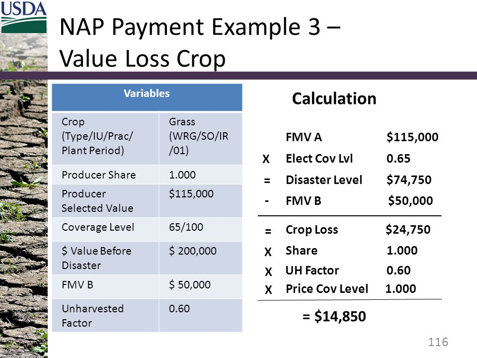 NAP Payment Example 3 – Value Loss Crop