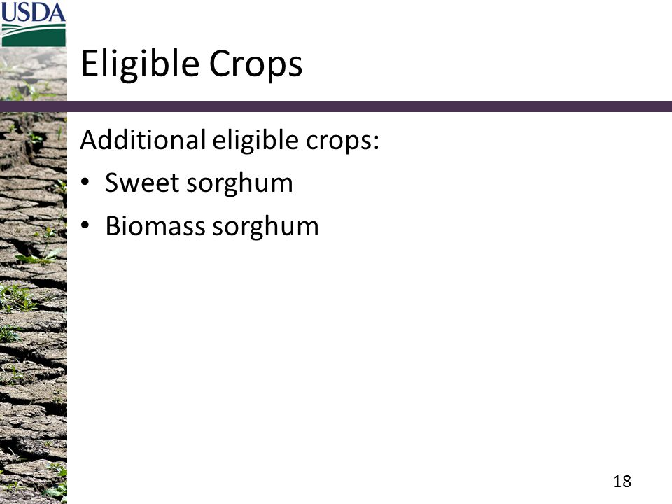 Eligible Crops Additional eligible crops: Sweet sorghum