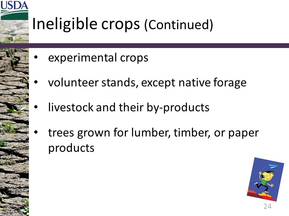 Ineligible crops (Continued)