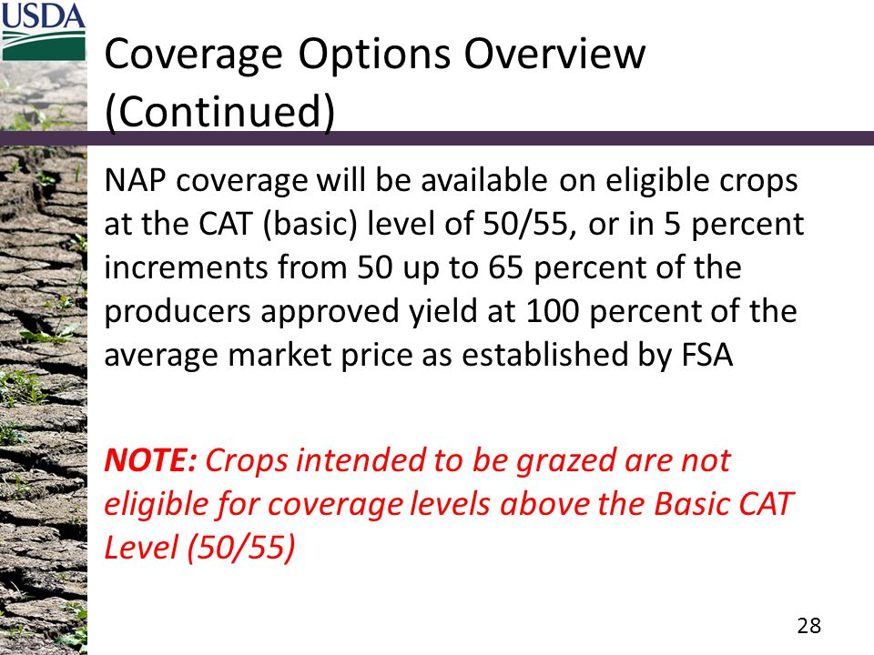 Coverage Options Overview (Continued)