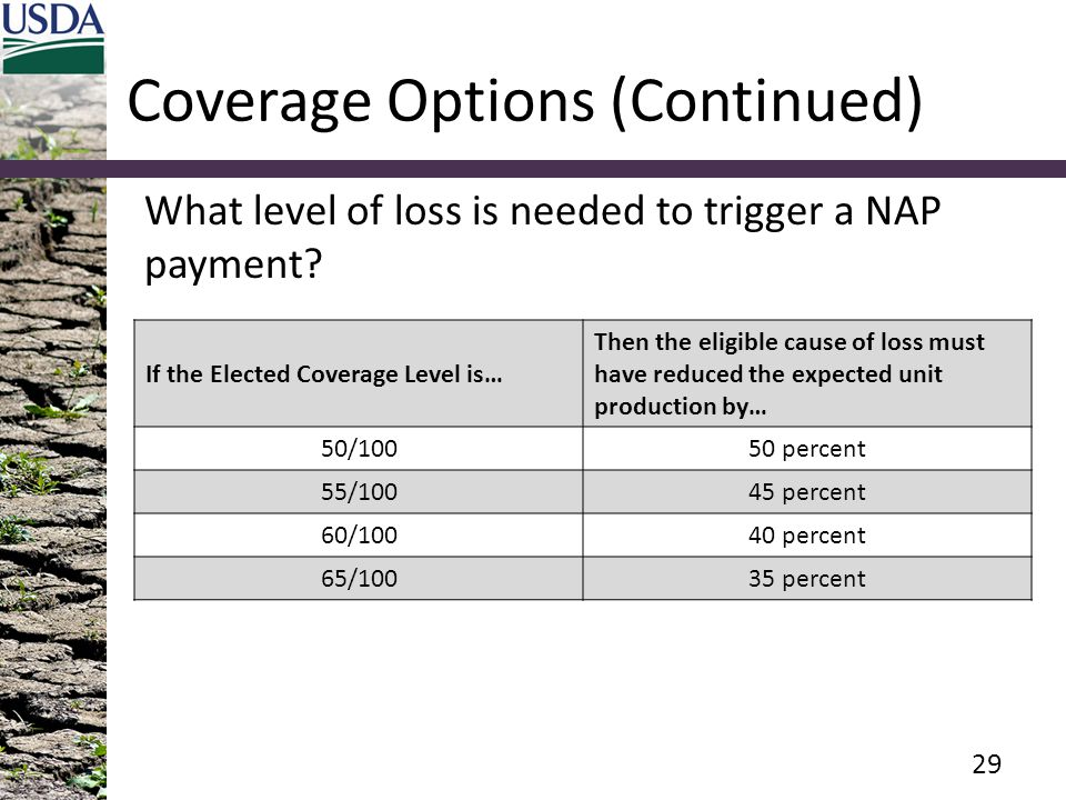 Coverage Options (Continued)