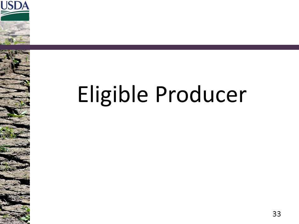 Eligible Producer