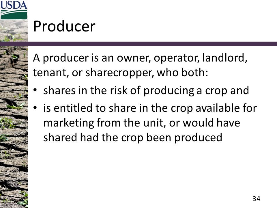 Producer A producer is an owner, operator, landlord, tenant, or sharecropper, who both: shares in the risk of producing a crop and.