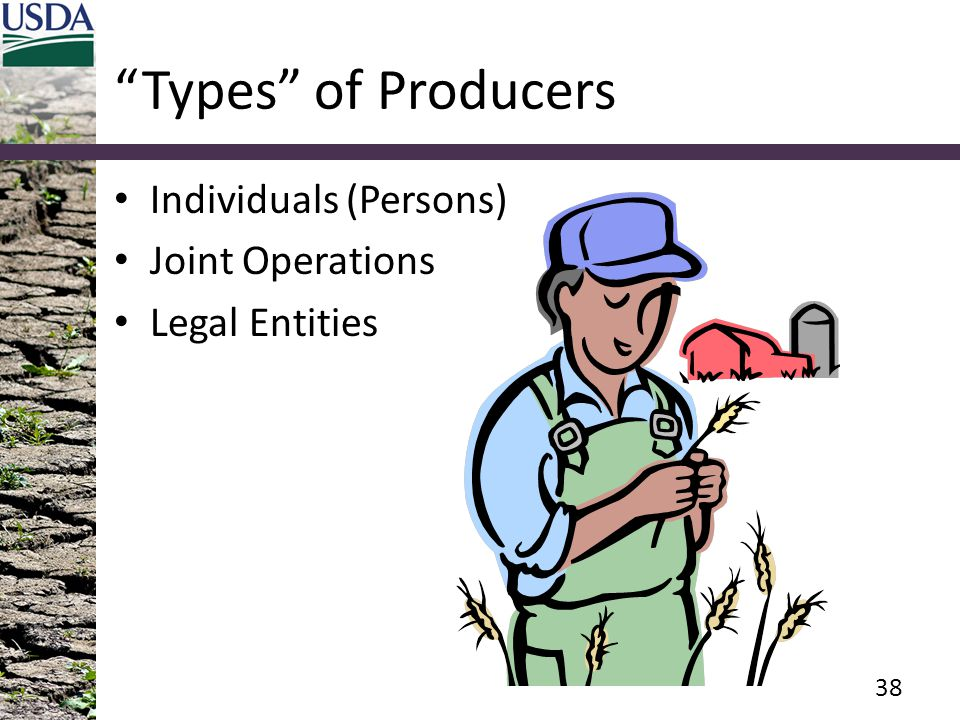 Types of Producers Individuals (Persons) Joint Operations