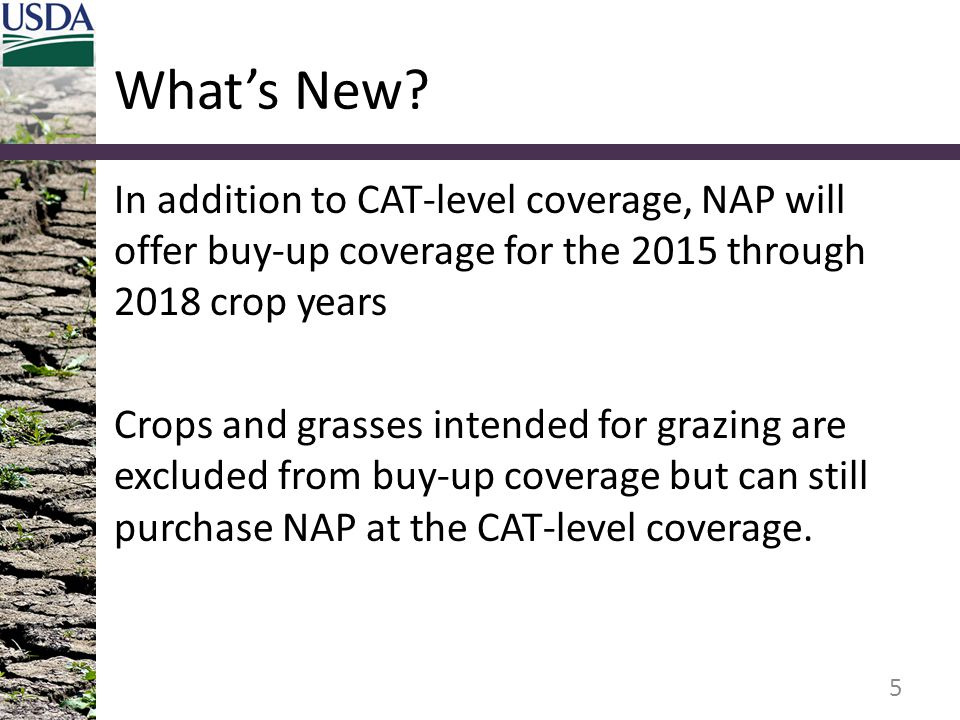 What's New In addition to CAT-level coverage, NAP will offer buy-up coverage for the 2015 through 2018 crop years.