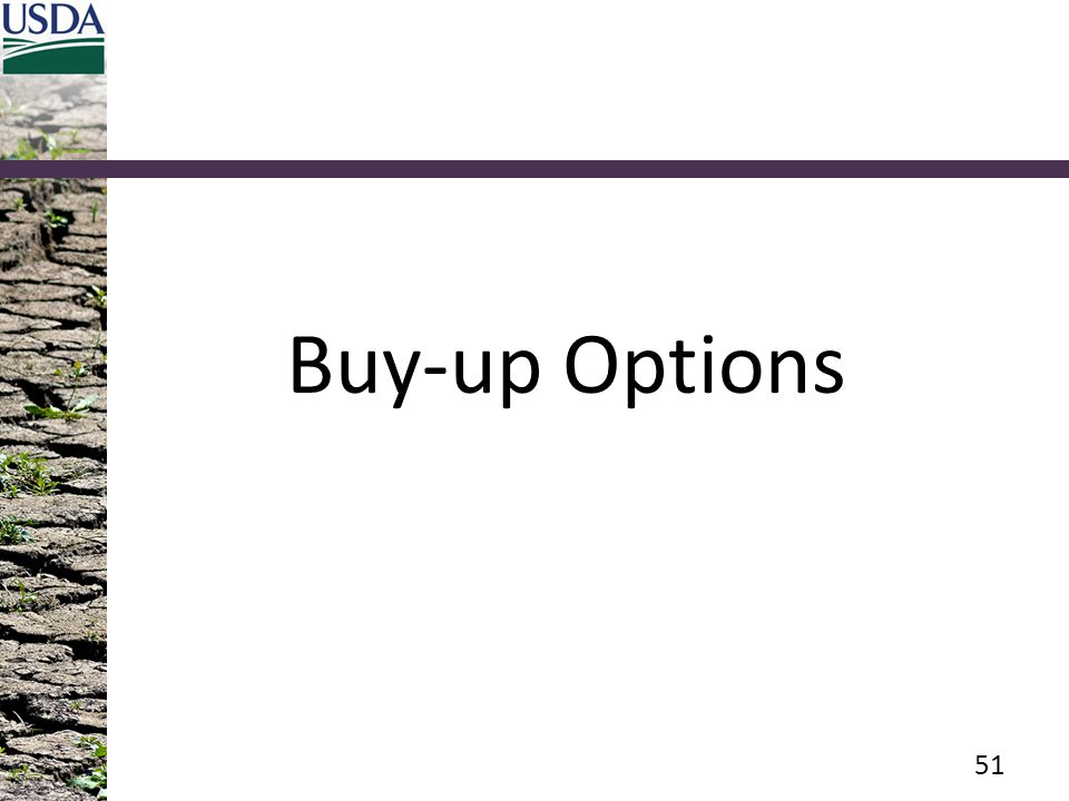 Buy-up Options Audience Recall, what options are available with buy-up coverage only