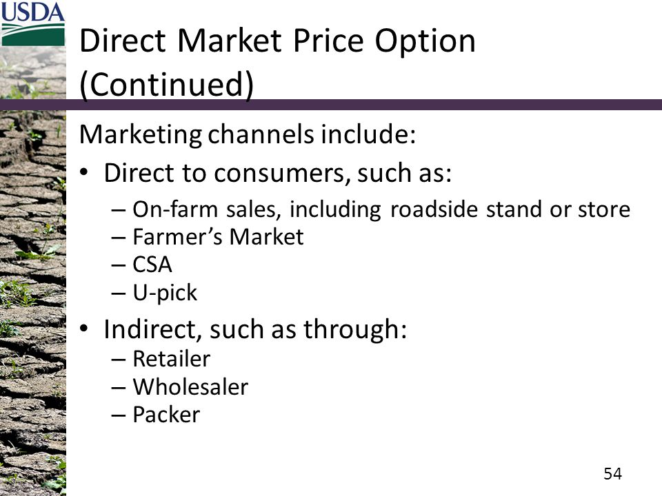 Direct Market Price Option (Continued)