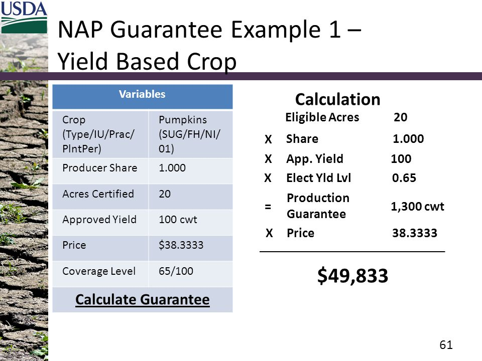 NAP Guarantee Example 1 – Yield Based Crop