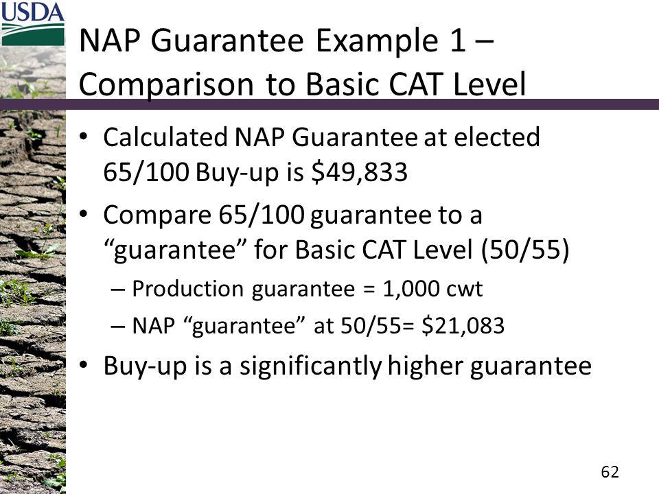 NAP Guarantee Example 1 – Comparison to Basic CAT Level
