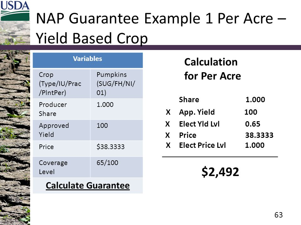 NAP Guarantee Example 1 Per Acre – Yield Based Crop