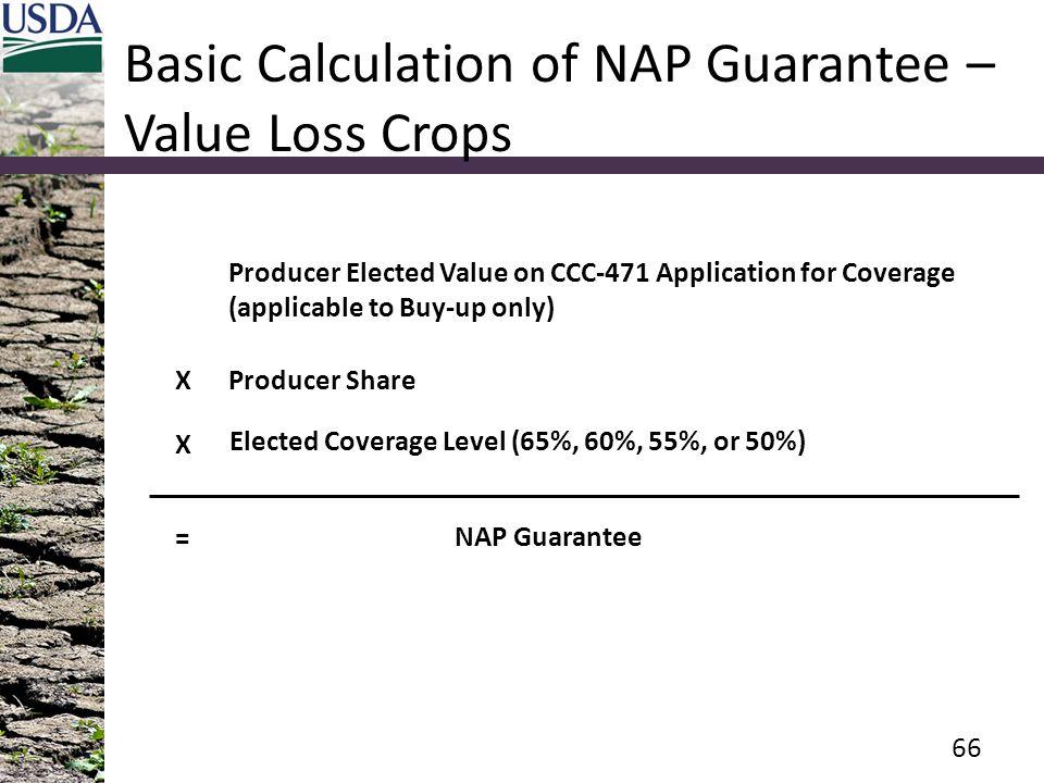 Basic Calculation of NAP Guarantee – Value Loss Crops