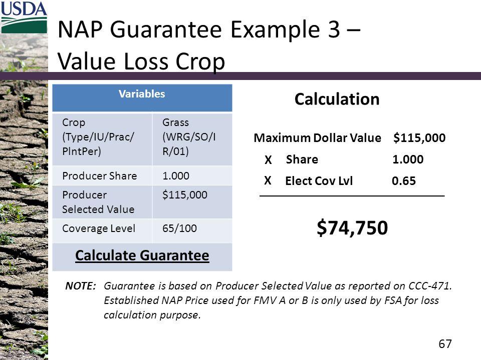 NAP Guarantee Example 3 – Value Loss Crop