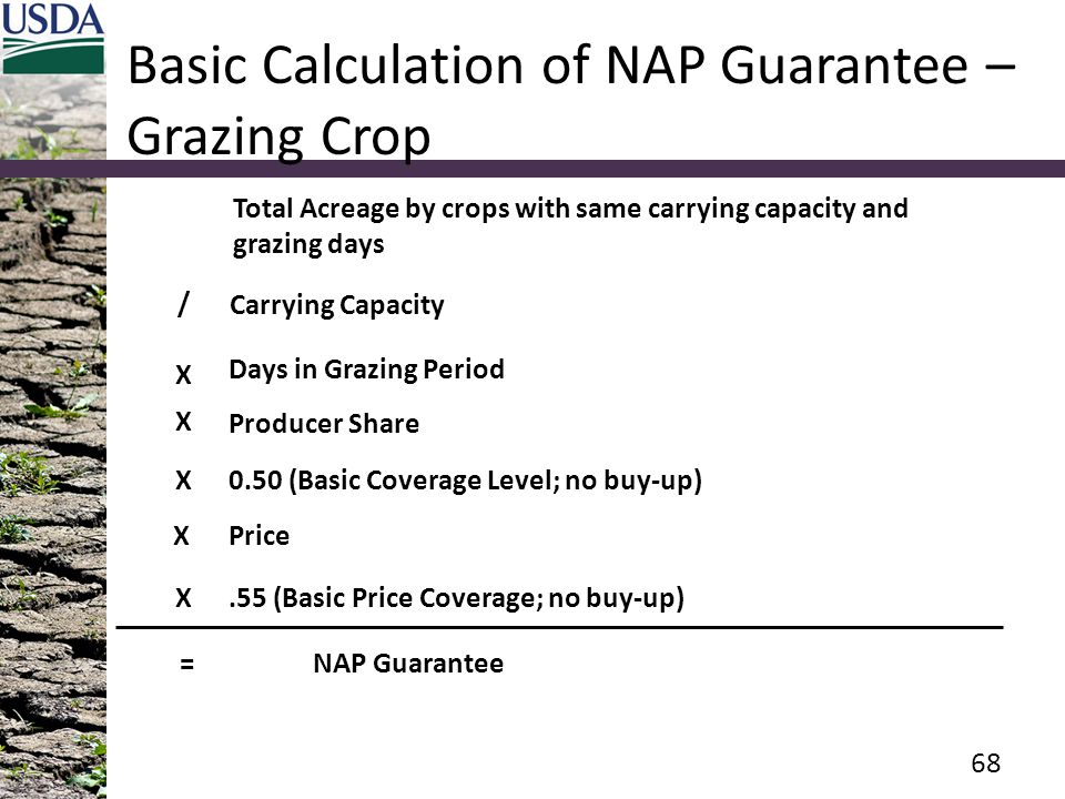 Basic Calculation of NAP Guarantee – Grazing Crop