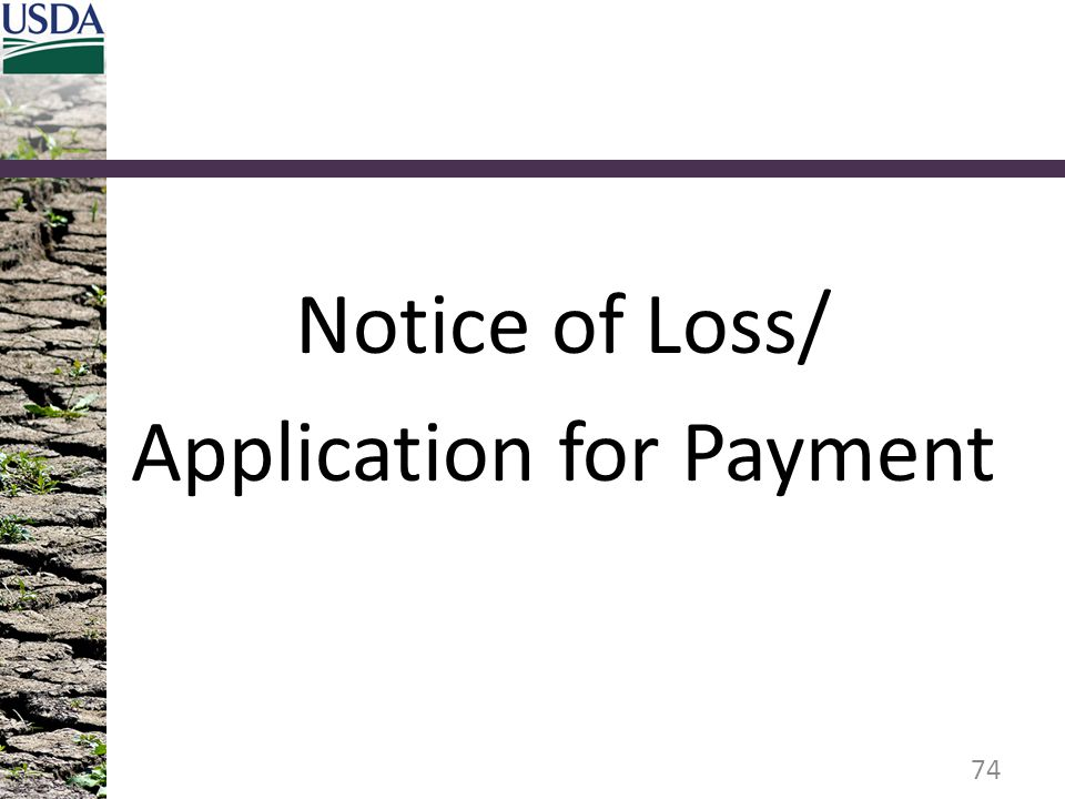 Notice of Loss/ Application for Payment